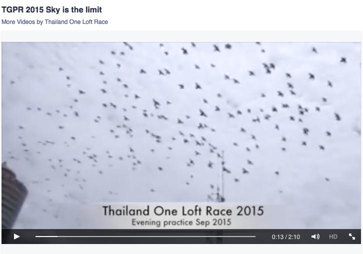 Screen Shot 2015-09-12 at 11.42.06 PM